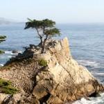 17 Mile Drive syd for Monterey – den mondæne strandvej